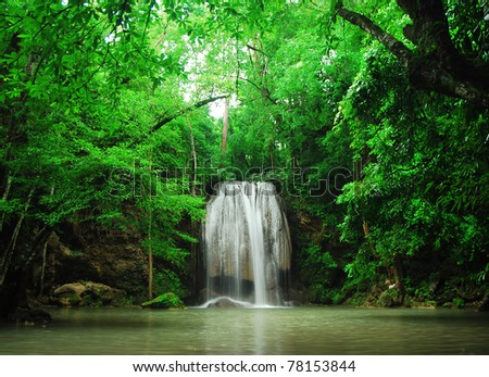 Waterfall Green forest bight stream