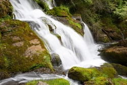 Waterfall in a natural environment of Catalonia, full of vegetation and green moss. Long exposure image giving great dynamism to the falling water, an amazing landscape in spain.