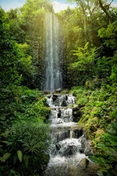 Waterfall in a tropical rainforest
