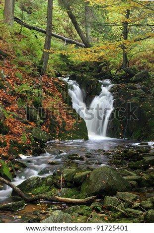 waterfall in autumn forrest