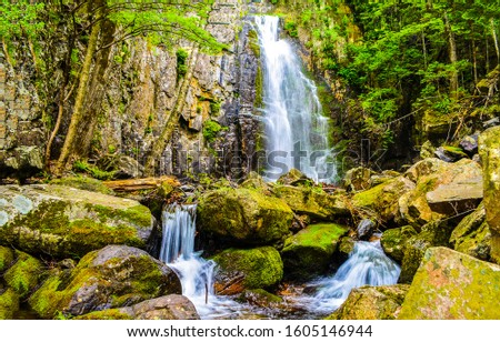 Waterfall in deep forest scene. Forest waterfall view. Deep forest waterfall landscape. Waterfall