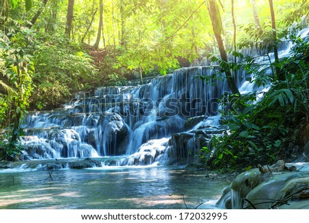 waterfall in jungle,Mexico #172032995