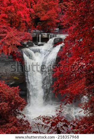 Waterfall in Khao Yai National Park. #218357968