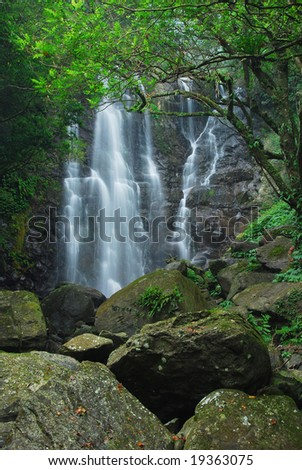 Waterfall in National Forest Recreation Area of Taiwan #19363075