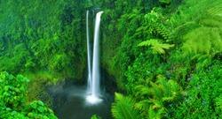 Waterfall in nature.