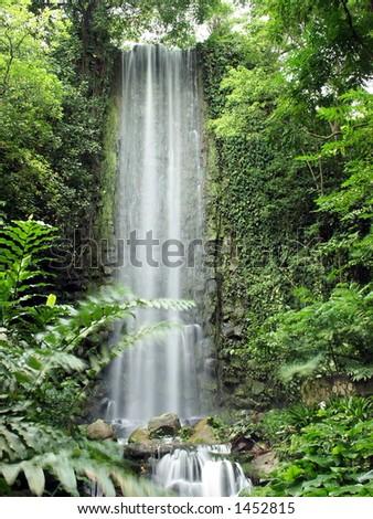 waterfall in the jungle #1452815