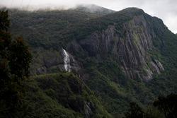 Waterfall in the national park of the adam's peak in Sri Lanka in Asia