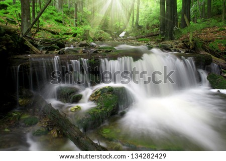 Waterfall in the national park Sumava-Germany