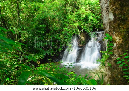 Waterfall in the wood #1068505136