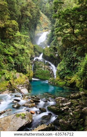 Waterfall in turquoise stream deep in the new zealand rainforest in the Fjordland National Park