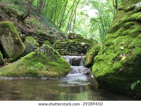 Waterfall leading to a calm pool of water surrounded by green moss covered rocks and trees.