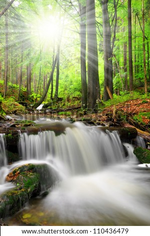 Waterfall on the White creek - National park Sumava Czech Republic Europe - stock photo
