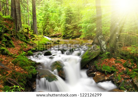 Waterfall on the White creek - National park Sumava Czech Republic Europe