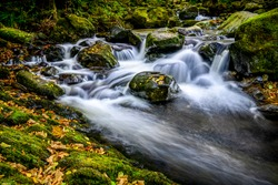 Waterfall river stream rocks view. Autumn forest river creek water. River creek in autumn forest