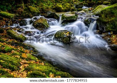Waterfall river stream rocks view. Autumn forest river creek water. River creek in autumn forest