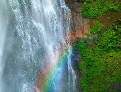 Waterfall with rainbow and green plants on wet stone
