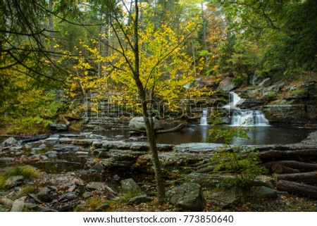 Waterfalls & Fall Foliage at George W Childs in Dingmans Ferry, PA