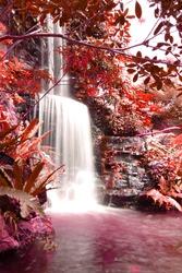 waterfalls in deep forest autumn season