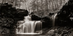 Waterfalls in woods in black and white panorama.