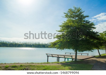 Waterfront pavilion, Waterfront pavilion and blue sky,Waterfront pavilion and Terminalia ivorensis Chev. #1468799096
