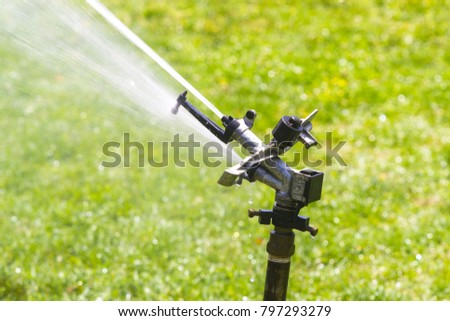 watering a lawn during the summer #797293279