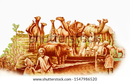 Watering and feeding animals: men and women with camels, sheep and cows at feeding trough. Portrait from Somalia 50 Somali Shillings 1983-1989 Banknotes.  Zdjęcia stock ©