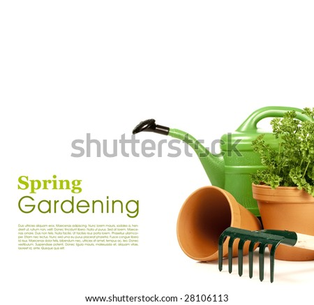 Watering can and garden tools on white