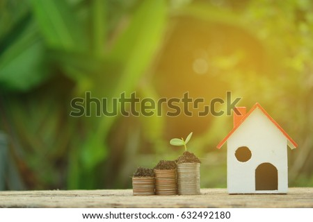 Watering can and plant tree, coin and green growing plant on old wood tree bokeh background. concept save money, Save money for the future. #632492180