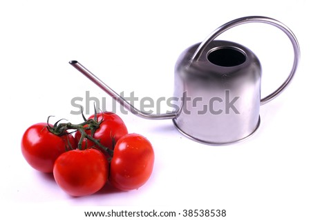 watering-can and tomatos