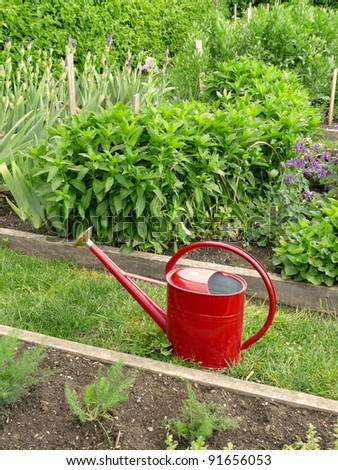 Watering can in garden