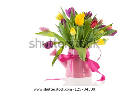 watering can with colorful bouquet birthday tulips in spring