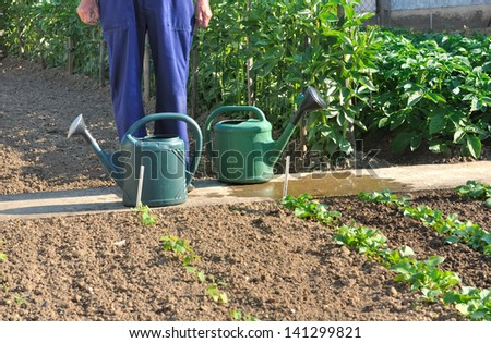 watering cans at the feet of a gardener in his garden