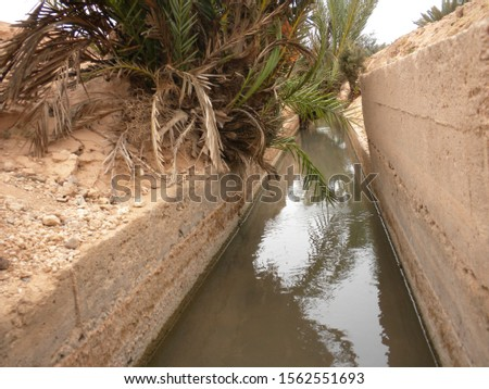 Watering channels amid oases in Morocco.