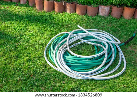 watering hose on a green lawn. Green hose for watering lies on grass. coiled rubber hose. Top view of an rubber hose on the green grass of a mown lawn, lawn care and watering.