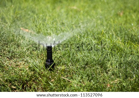 Watering the garden automatically - stock photo