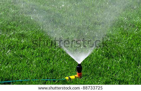 Watering the Lawn with Sprinkler