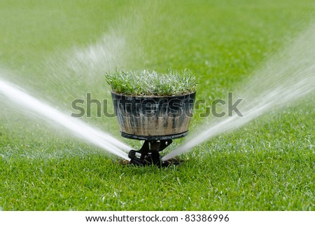 Watering turf - stock photo