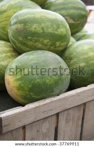 Watermelon at outdoor fruit stand