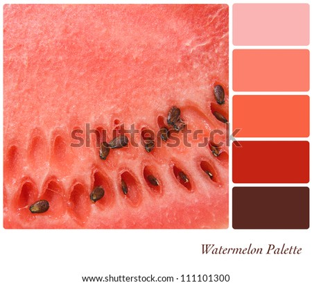 Watermelon background colour palette with complimentary swatches.