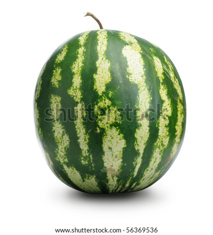 Watermelon on withe background