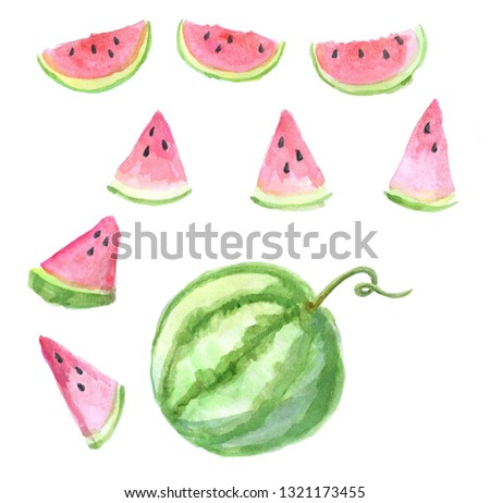 Watermelon slices and watermelon. Sketch set for your design.