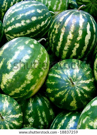 Watermelons - at market