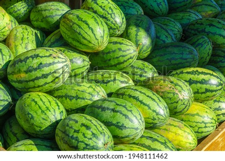 Watermelons on sale in the Jean-Talon Market Market, Little Italy district, Montreal, Quebec, Canada Photo stock ©