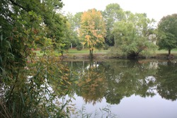 Waterreflects along the River Nahe in Bad Kreuznach, seen Summer 19