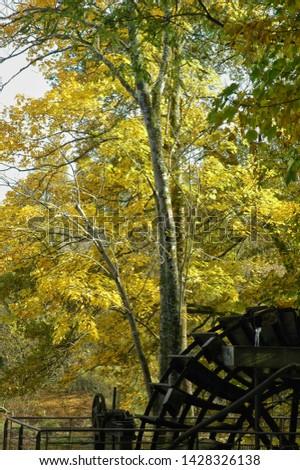 Waterwheel in an autumn wood, found in Saint Junien, Limousin France #1428326138