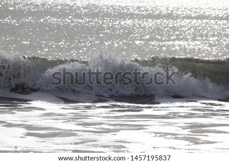 wave breaking and glistening in the sun