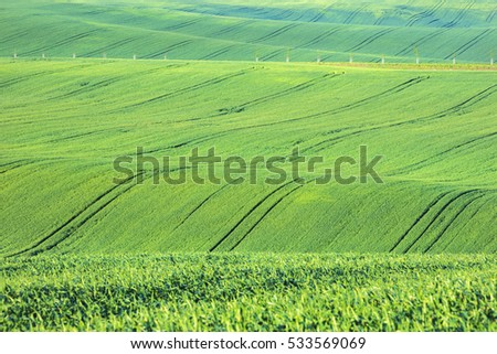 waves and tractor trails on the green fields #533569069