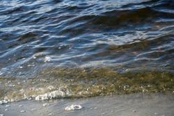 Waves break on the granite stone near the shore of the Gulf of Finland near the village of Repino, Leningrad region. Saint-Petersburg, Russia, water landscape Granite in the water