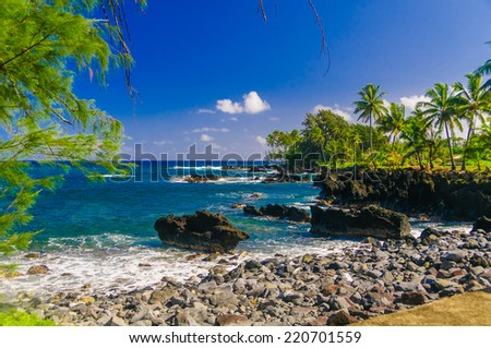 Waves breaking on the rocks on a sunny day during a spectacular ocean view on the Road to Hana, Maui, Hawaii, USA #220701559