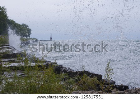 Waves crash on city shoreline with foliage in foreground